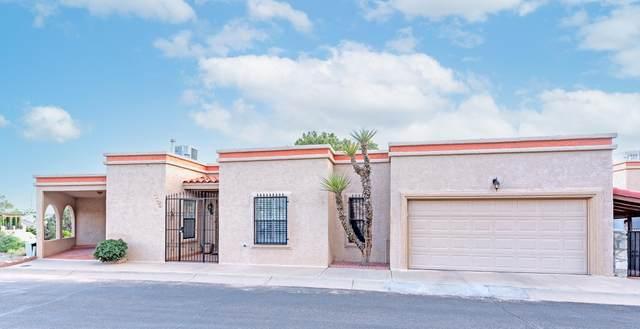 11266 Enid Wilson Lane, El Paso, TX 79936 (MLS #851419) :: Red Yucca Group