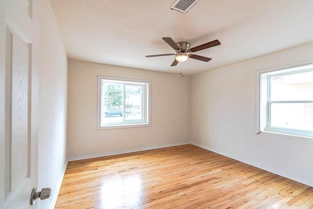 335 Lynne Way Way, El Paso, TX 79915 (MLS #851544) :: The Purple House Real Estate Group