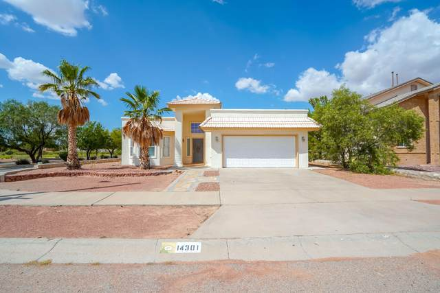 14301 Desert Shadow Drive, Horizon City, TX 79928 (MLS #851731) :: Jackie Stevens Real Estate Group