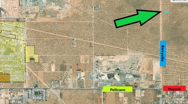 6 Rogas, Horizon City, TX 79928 (MLS #851844) :: Summus Realty