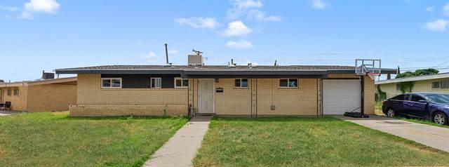 5212 Harlan Drive, El Paso, TX 79924 (MLS #851870) :: Jackie Stevens Real Estate Group