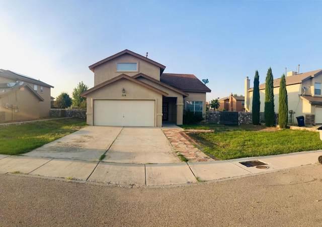 729 Portillo Drive, El Paso, TX 79932 (MLS #851962) :: Preferred Closing Specialists