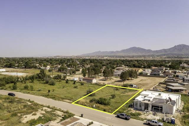 2844 Girl Scout Lane, Sunland Park, NM 88063 (MLS #851998) :: The Purple House Real Estate Group