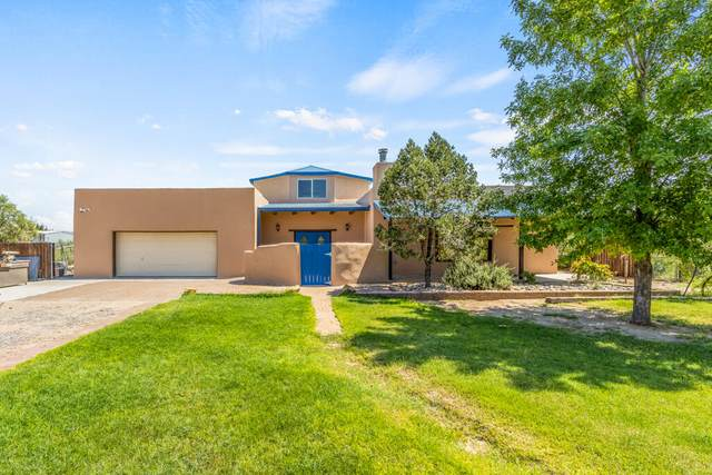 2750 Anthony Drive, Anthony, NM 88021 (MLS #852047) :: Summus Realty