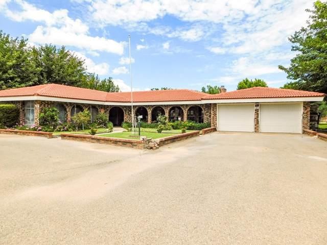 121 La Nell Drive, Canutillo, TX 79835 (MLS #852070) :: Summus Realty