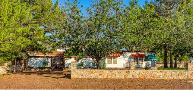15 Cielo Del Rey, Anthony, NM 88021 (MLS #852085) :: Mario Ayala Real Estate Group