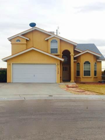 12240 Kira Christel Ln., El Paso, TX 79936 (MLS #852100) :: The Purple House Real Estate Group
