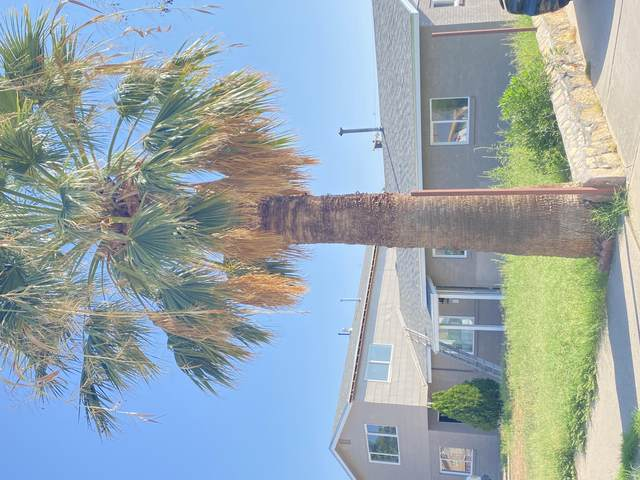 9530 Roanoke Drive, El Paso, TX 79924 (MLS #852110) :: The Purple House Real Estate Group