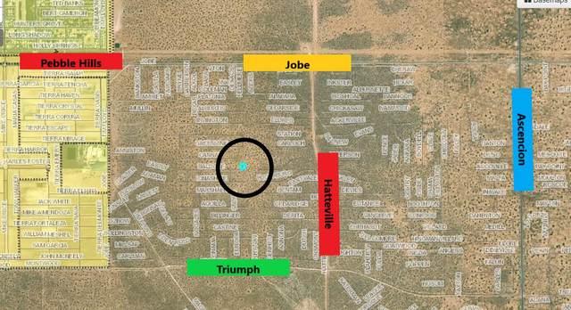 0 Baldone Avenue, El Paso, TX 79938 (MLS #852138) :: Preferred Closing Specialists