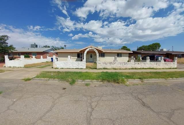 9508 Charleston Street, El Paso, TX 79924 (MLS #852164) :: The Purple House Real Estate Group