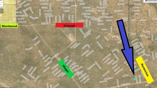 0 Jaimont Place, El Paso, TX 79938 (MLS #852188) :: Preferred Closing Specialists