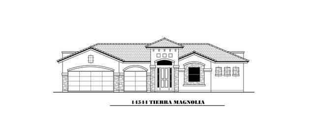14544 Tierra Magnolia, El Paso, TX 79938 (MLS #852228) :: Preferred Closing Specialists