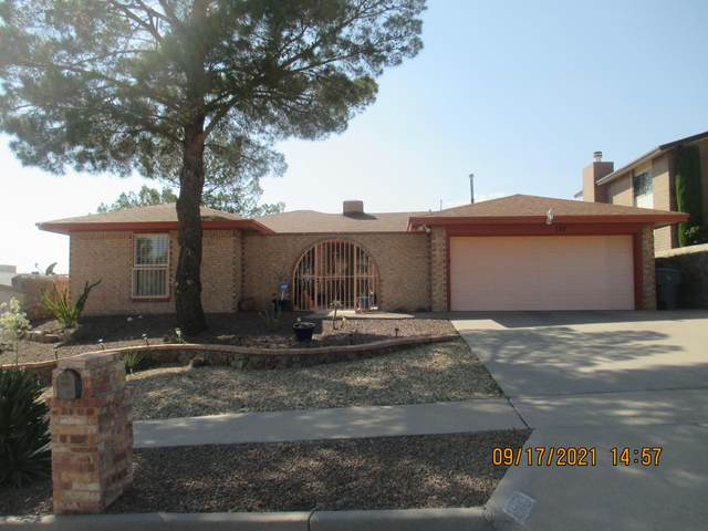 137 Masquerade Lane, El Paso, TX 79912 (MLS #852241) :: Summus Realty