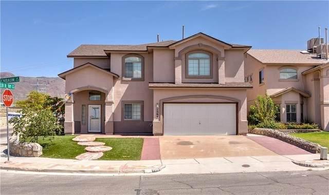 1564 Rosenbaum Lane, El Paso, TX 79912 (MLS #852267) :: Jackie Stevens Real Estate Group