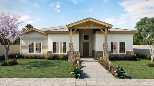 2225 Mike Price, El Paso, TX 79938 (MLS #852276) :: The Purple House Real Estate Group