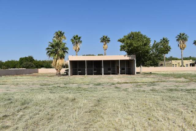 20 Cielo Vista, Anthony, NM 88021 (MLS #852283) :: Summus Realty