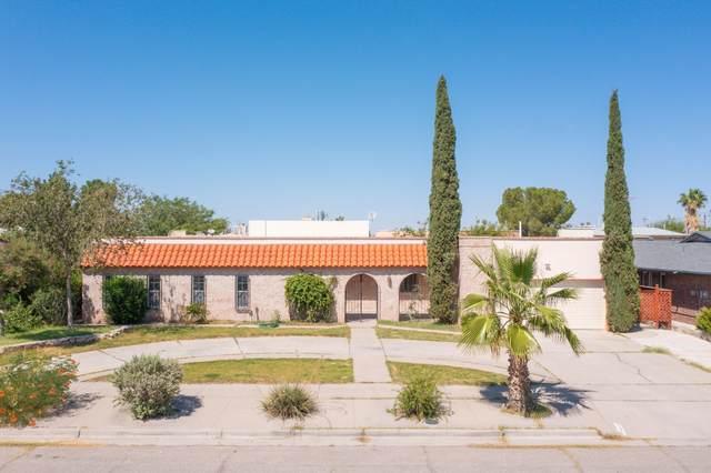 10627 Quezada Avenue, El Paso, TX 79935 (MLS #852288) :: Jackie Stevens Real Estate Group