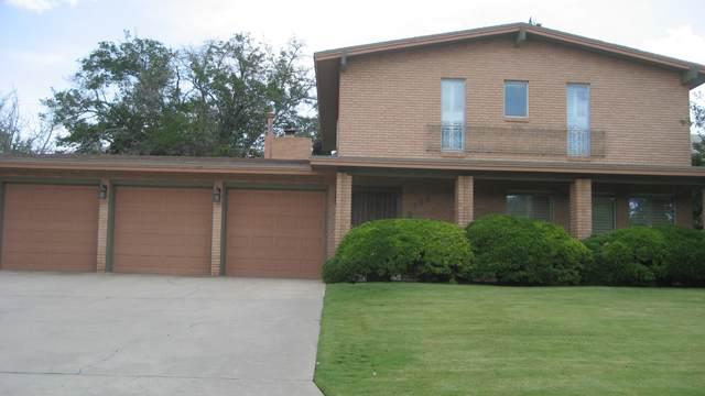 509 Satellite Drive, El Paso, TX 79912 (MLS #852290) :: Summus Realty