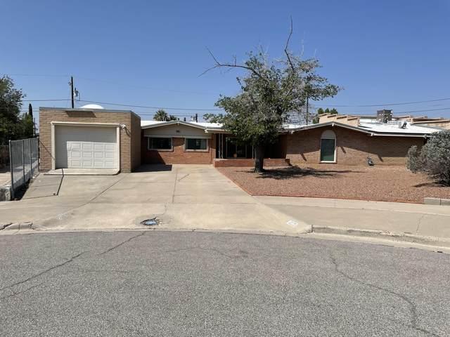 7116 Tierra Alta Avenue, El Paso, TX 79912 (MLS #852326) :: Jackie Stevens Real Estate Group