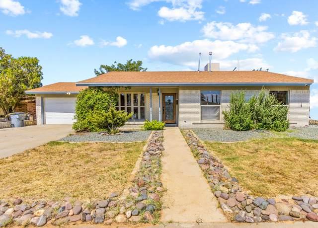 10325 Cardigan Drive, El Paso, TX 79925 (MLS #852419) :: Summus Realty