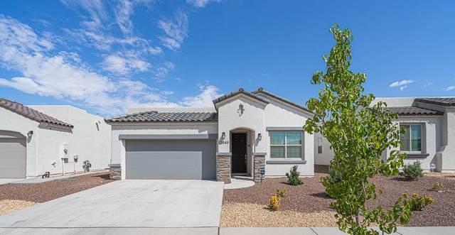 13645 Samlesbury Avenue, Horizon City, TX 79928 (MLS #852491) :: The Purple House Real Estate Group