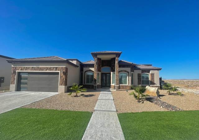14749 Cactus Crossing Drive, Horizon City, TX 79928 (MLS #852492) :: The Purple House Real Estate Group