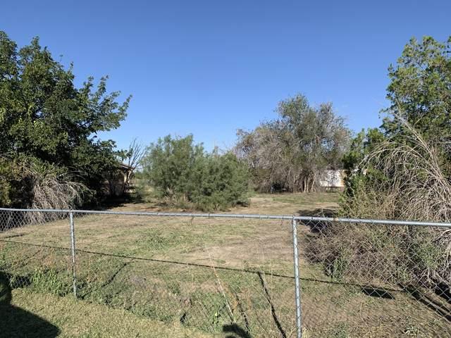 272 Wellettka, Socorro, TX 79927 (MLS #852493) :: The Purple House Real Estate Group