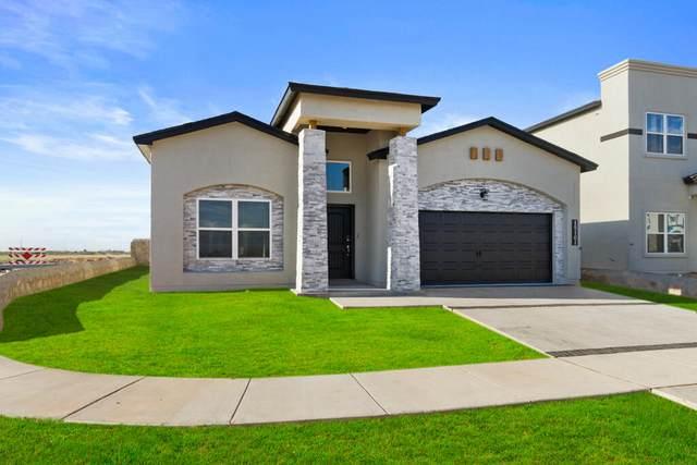 13665 Baja Vista Court, Horizon City, TX 79928 (MLS #852552) :: Mario Ayala Real Estate Group