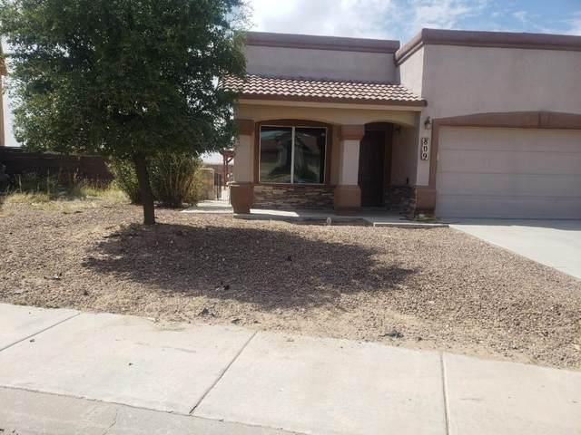 809 Desert Bush Drive, El Paso, TX 79928 (MLS #852578) :: The Purple House Real Estate Group
