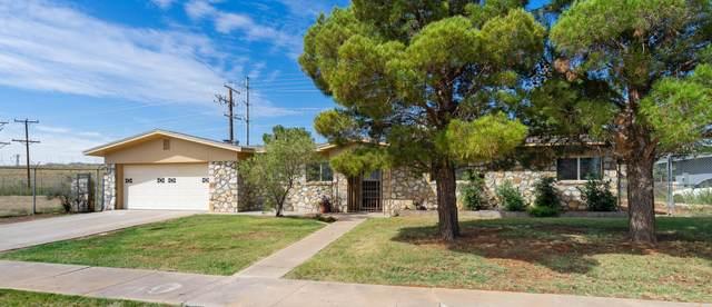 9417 Gschwind Avenue, El Paso, TX 79924 (MLS #852665) :: The Purple House Real Estate Group