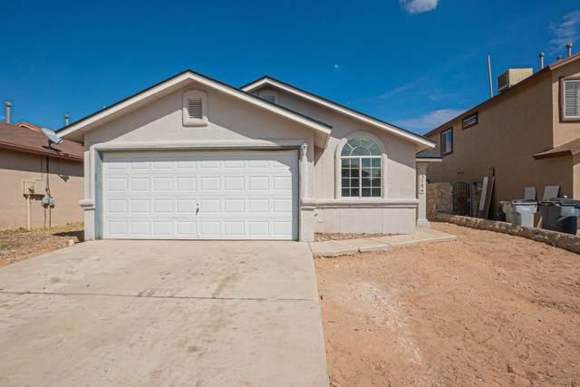 3704 Tierra Alamo Drive, El Paso, TX 79938 (MLS #852688) :: Mario Ayala Real Estate Group