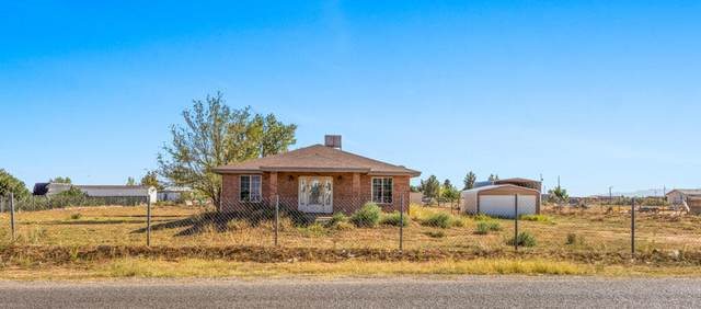 1033 Luna Drive, Chaparral, NM 88081 (MLS #852757) :: The Purple House Real Estate Group