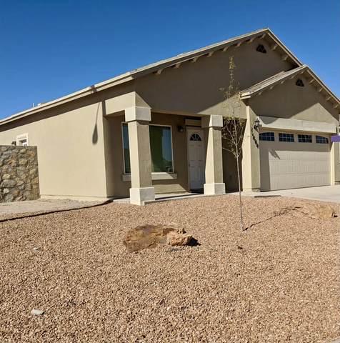 11664 Flor Freesia Drive, Socorro, TX 79927 (MLS #852845) :: Jackie Stevens Real Estate Group