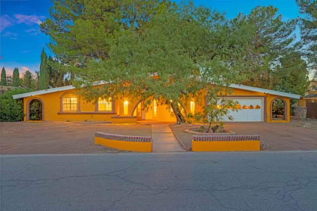 5388 Cory Drive, El Paso, TX 79932 (MLS #852862) :: The Purple House Real Estate Group