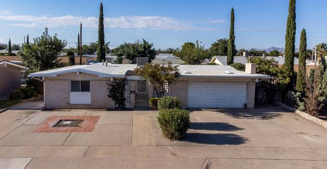 8112 Freedom Drive, El Paso, TX 79925 (MLS #853099) :: The Purple House Real Estate Group