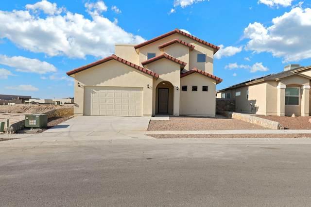 14724 John Mcneely Avenue, El Paso, TX 79938 (MLS #853102) :: Mario Ayala Real Estate Group