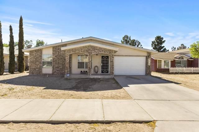 517 Von Bargen Drive, Horizon City, TX 79928 (MLS #853157) :: The Matt Rice Group