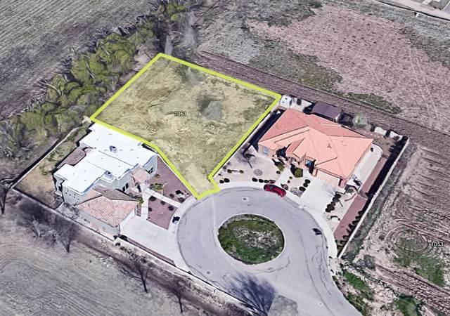 1061 Maximo Street, El Paso, TX 79932 (MLS #853166) :: Jackie Stevens Real Estate Group