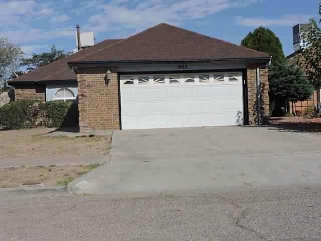1992 Dana Bree Drive, El Paso, TX 79936 (MLS #853179) :: The Matt Rice Group