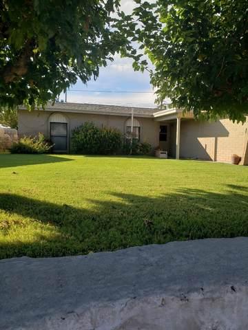 9949 Sidewinder Street, El Paso, TX 79924 (MLS #853243) :: The Purple House Real Estate Group