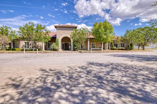 656 Cox Road, El Paso, TX 79932 (MLS #853282) :: Jackie Stevens Real Estate Group