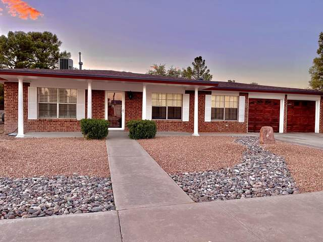 3105 Hector Drive, El Paso, TX 79935 (MLS #853315) :: The Purple House Real Estate Group