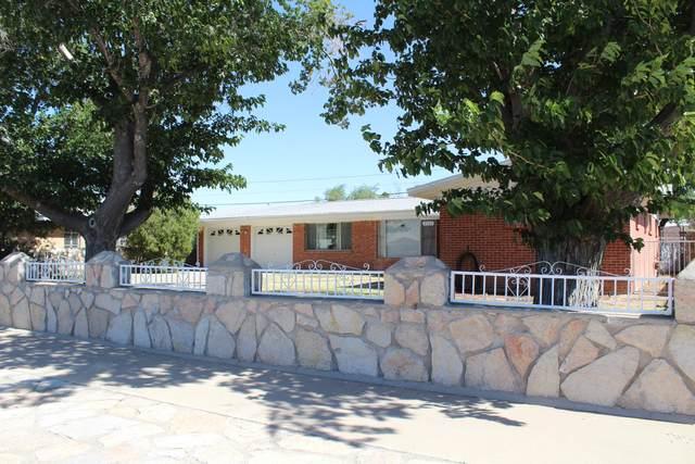 9504 Roanoke Drive, El Paso, TX 79924 (MLS #853412) :: Red Yucca Group