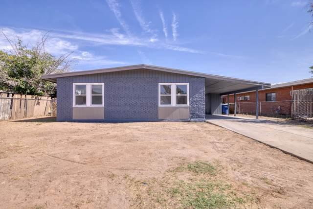 8826 Mount Elbert Drive, El Paso, TX 79904 (MLS #853424) :: The Purple House Real Estate Group