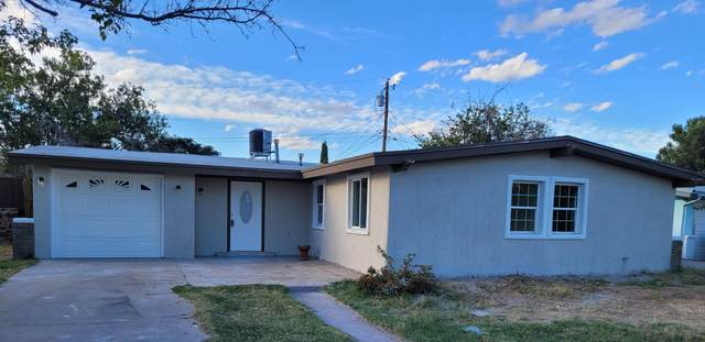 321 Turnstone Drive, El Paso, TX 79922 (MLS #853429) :: The Purple House Real Estate Group