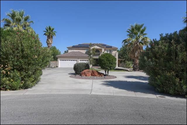 533 Meadow Willow Drive, El Paso, TX 79922 (MLS #853431) :: Mario Ayala Real Estate Group