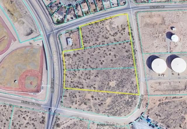 1204 Timothy Drive, El Paso, TX 79928 (MLS #853445) :: Jackie Stevens Real Estate Group
