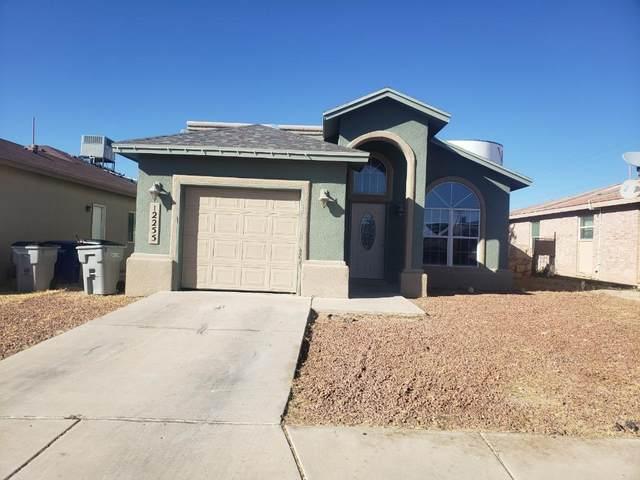 12255 Saint Mark Avenue, El Paso, TX 79936 (MLS #853447) :: Summus Realty