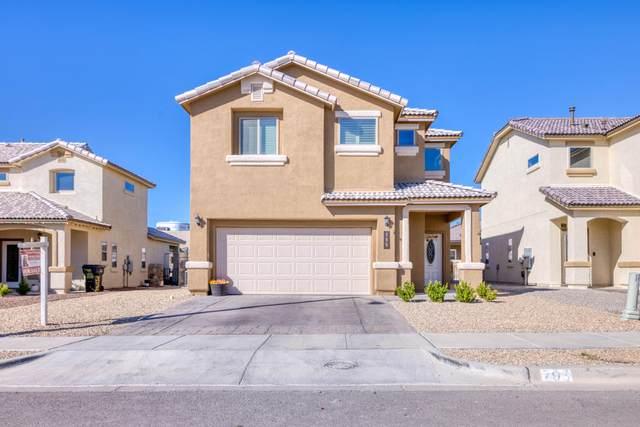 795 Pixton Road, El Paso, TX 79928 (MLS #853488) :: The Purple House Real Estate Group