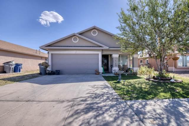 14368 Jacinto Ramos Avenue, El Paso, TX 79938 (MLS #853489) :: Jackie Stevens Real Estate Group
